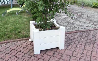 Flowerpots and garden architecture