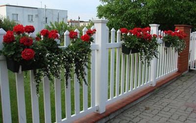 Residential fences (allotments)